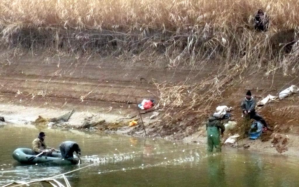 лов толстолоба в краснодарском крае в ноябре