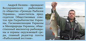 Андрей Нелипа